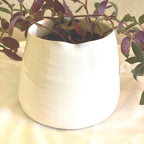 Wildflower pot