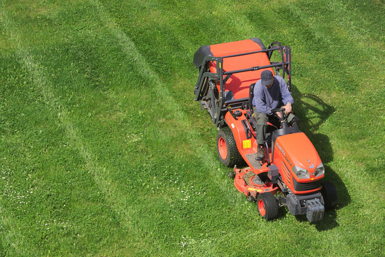 Why are lawnmowers like husbands?