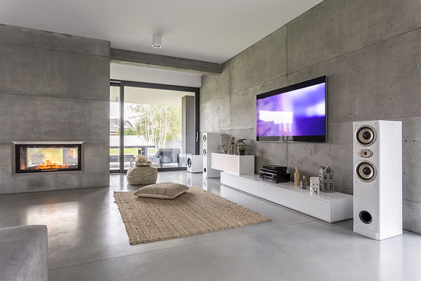 Tv living room with window, fireplace an