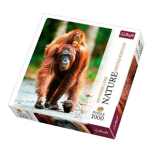 Trefl - Naturaleza: Orangután