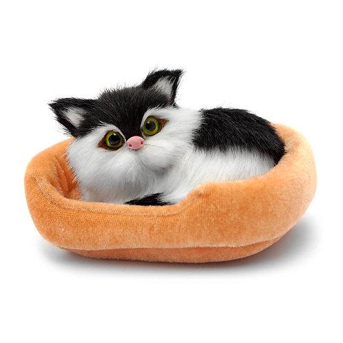 Simulación Gato - Acostado III