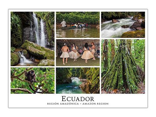 Ecuador - Región Amazónica I