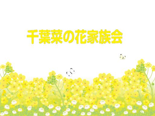 千葉菜の花家族会5月例会