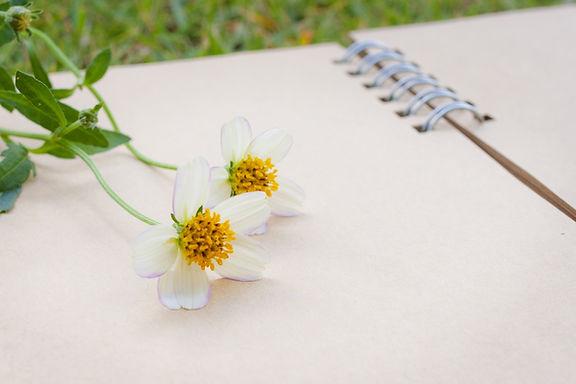 花とノート.jpg