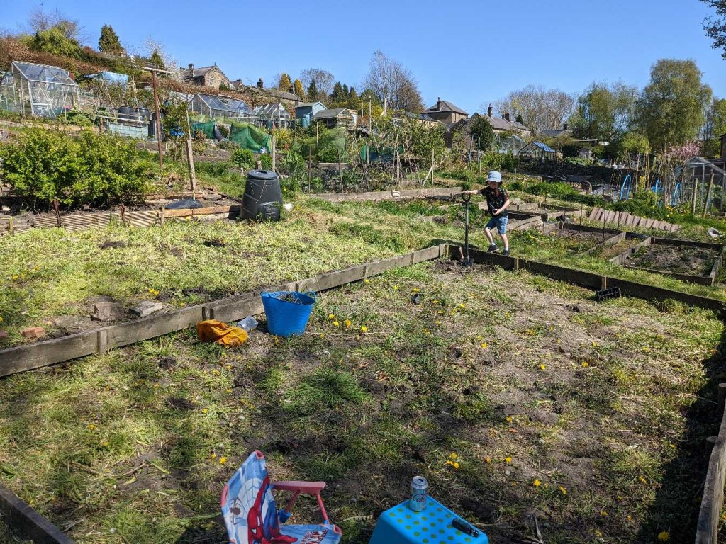 Ted's allotment