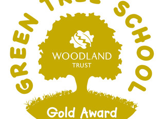 Green Tree Schools Award - Gold!