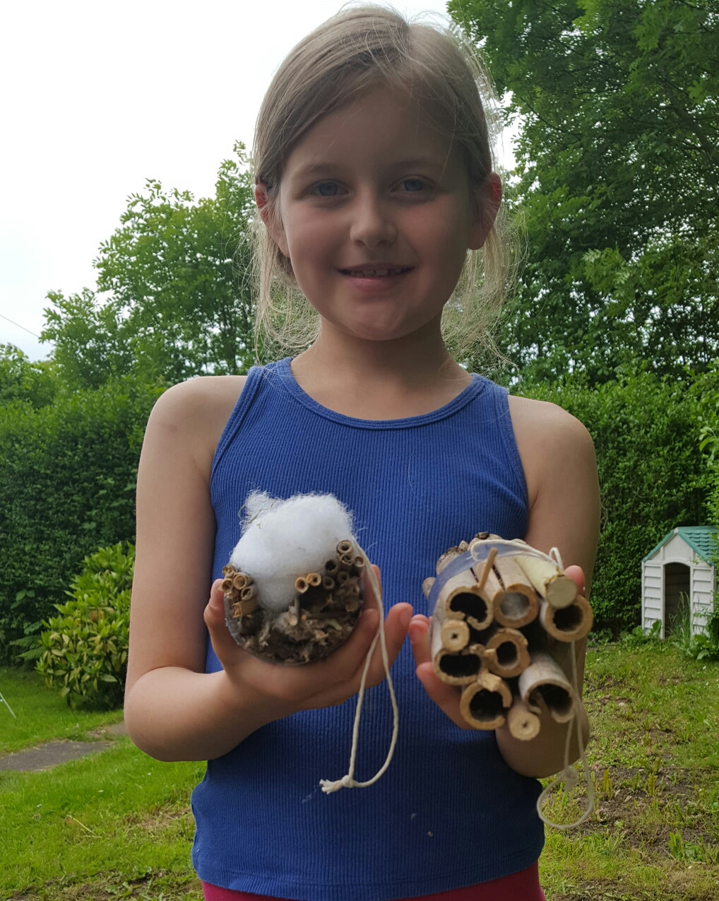 Insect & Bee Hotels