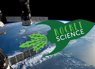 St. Giles CofE Primary School Matlock to grow seeds from space!