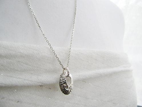 Double Limpet Necklace