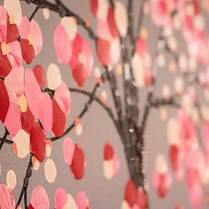 Simon Bull - National Cherry Blossom Festivities