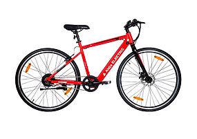 Ahija Lightcycle.jpg