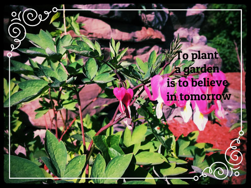 To Garden is to Share
