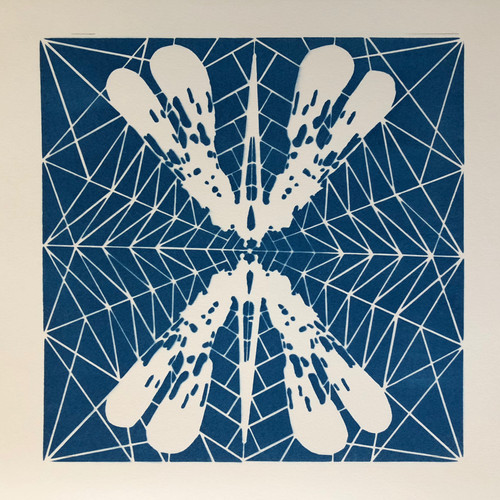cyano#16