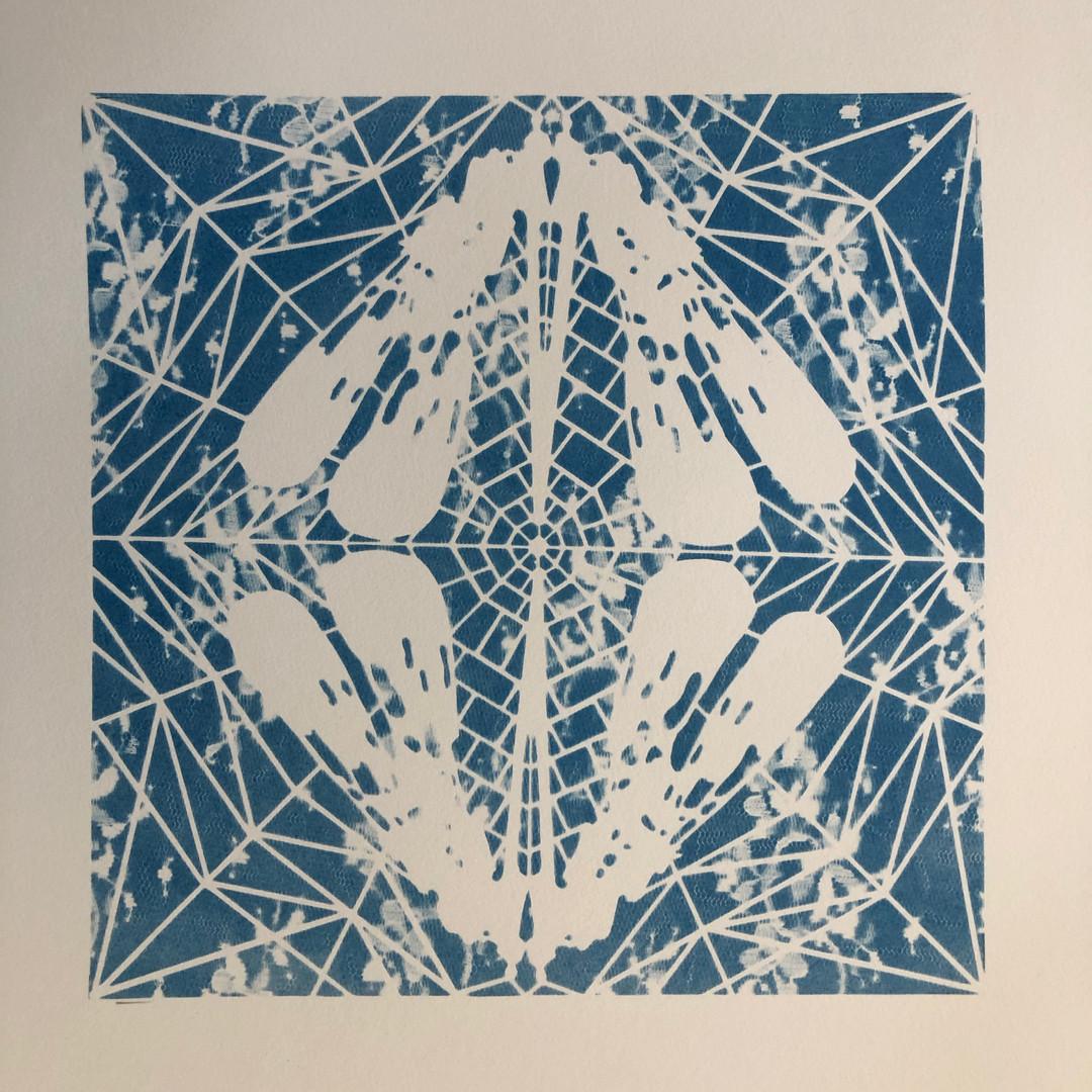 cyano#22