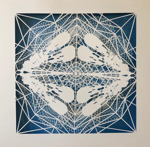 cyano+ #1