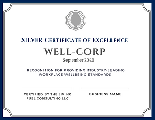 Certificate of Excellence copy 2.png