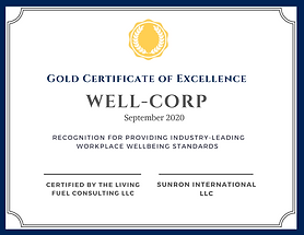 Certificate of Excellence copy.png