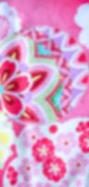 DSC_3651-2.jpg