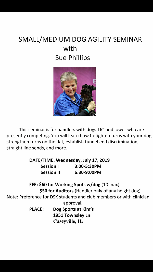 Sue Phillips seminar July 2017 info.PNG
