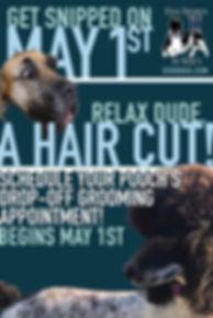 Get snipped (grooming 5-1-2020).jpg