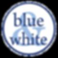 blueandwhite_np_4.png