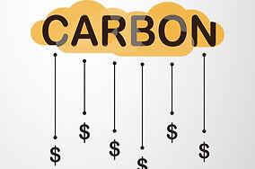 Carbon Pricing.jpg