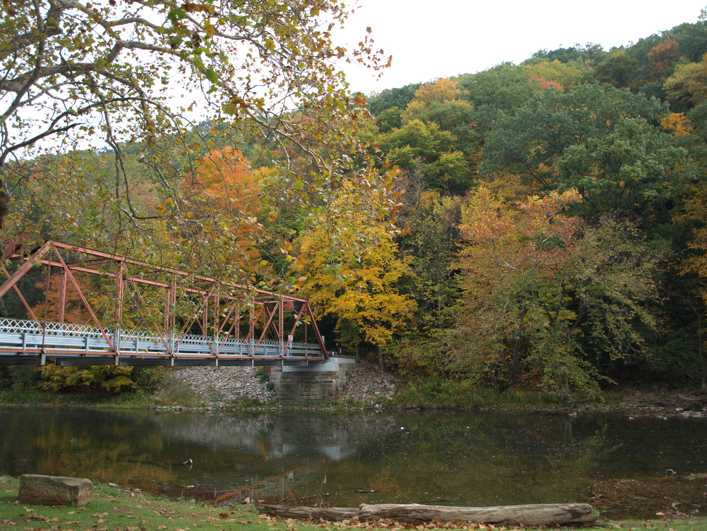 Fall in Beaver Creek