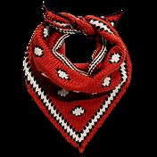 červená šatôčka.png