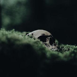skull-aesthetic-hela-Favim.com-6327654.j