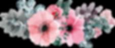Flowers-Vectors-Clipart-PNG-Image-05.png