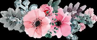Flowers-Vectors-Clipart-PNG-Image-05 (1)