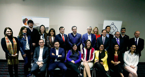 Primer Aniversario RIM Chile