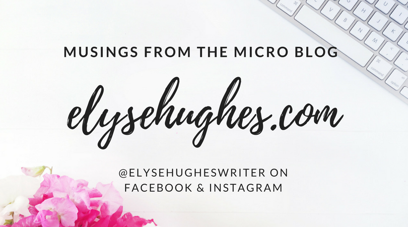 Musings From The Micro Blog