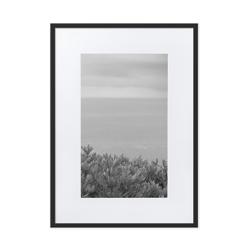 Plants and Sea Matte Paper Framed Poster