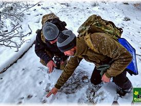 Schneegestöber im Kellerwald