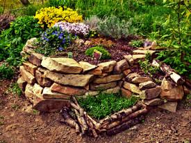 Projekt - Mein ungezähmter Garten