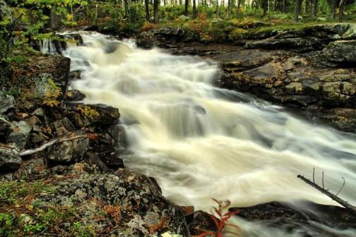 Überall sprudeln wilde Wasser