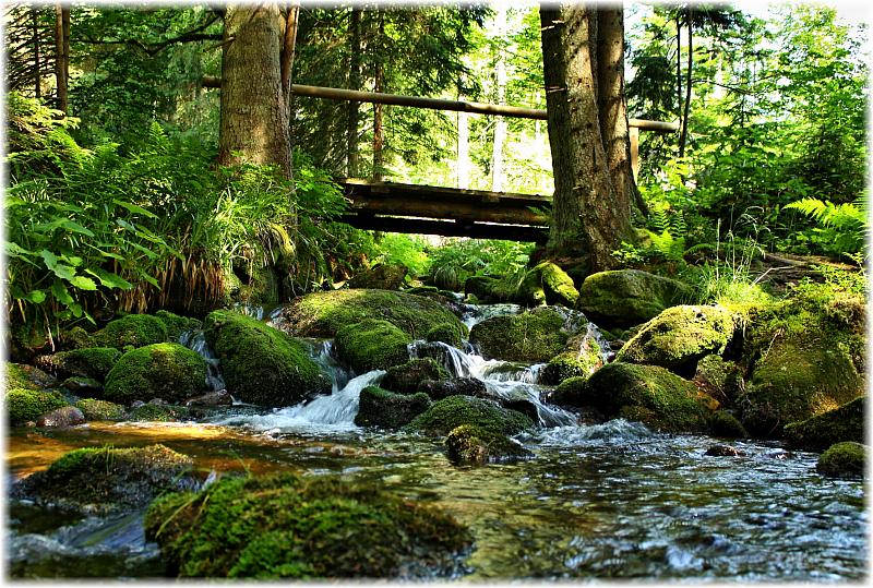 Vom Klausentor bis zur Fredensbrücke benötigt das Wasser ca. 30 Minuten.