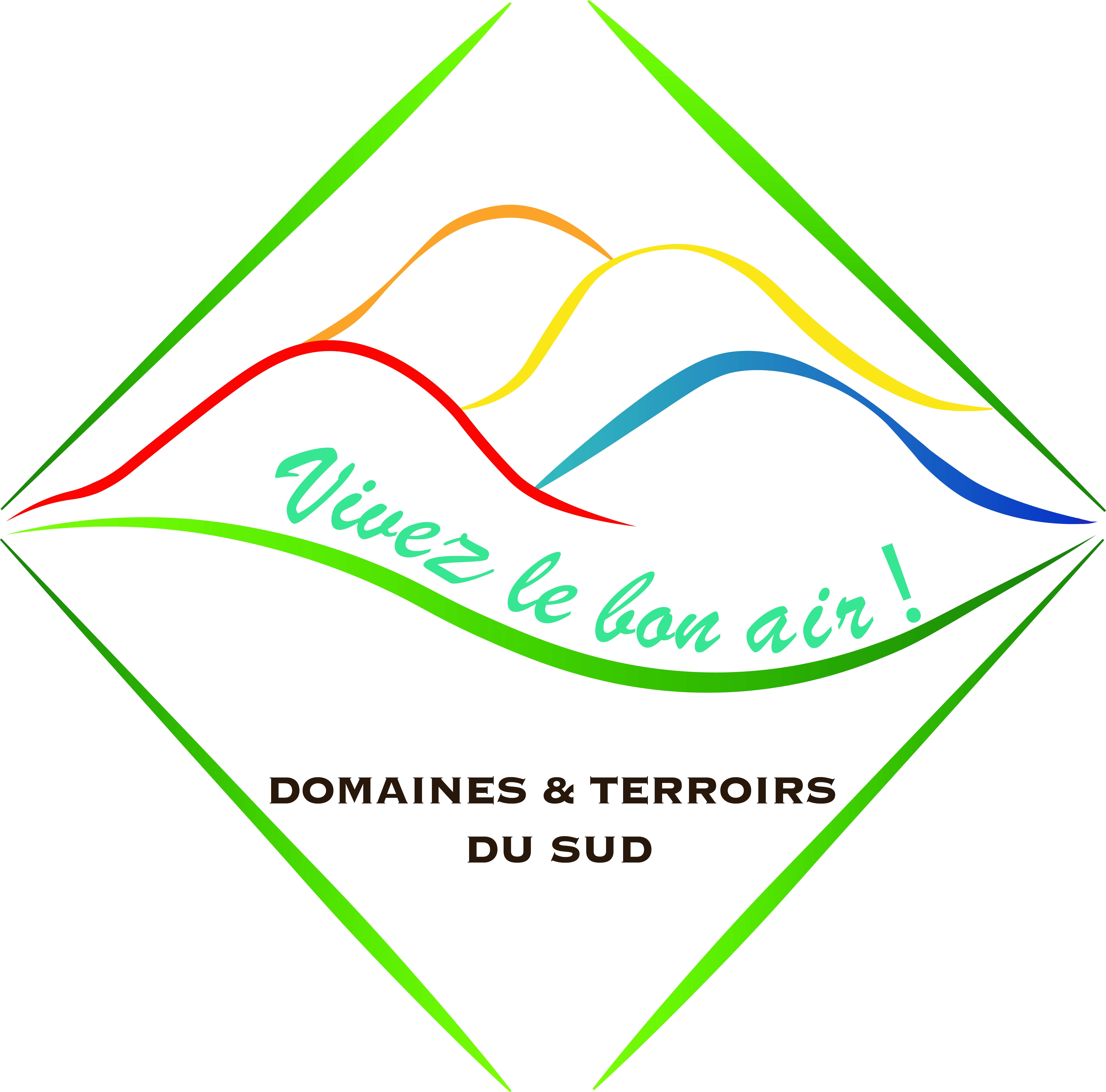 logo D&T du sud