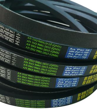 b section v belt.jpg