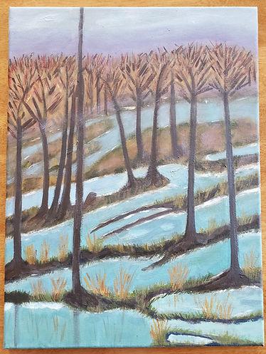 Enchanted woods 2.28.21.jpg