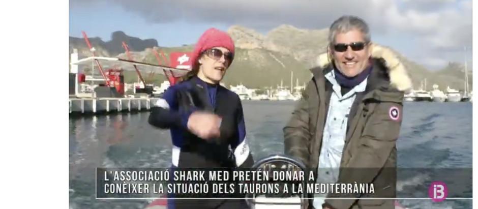 El programa Méteo de IB3TV emite un reportaje sobre Shark Med