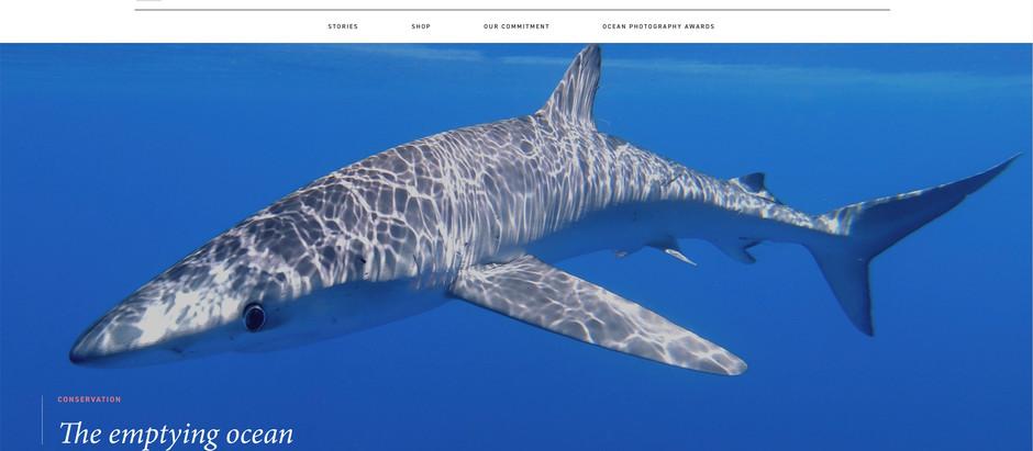 Oceanographic Magazine publica un artículo de Agustí Torres