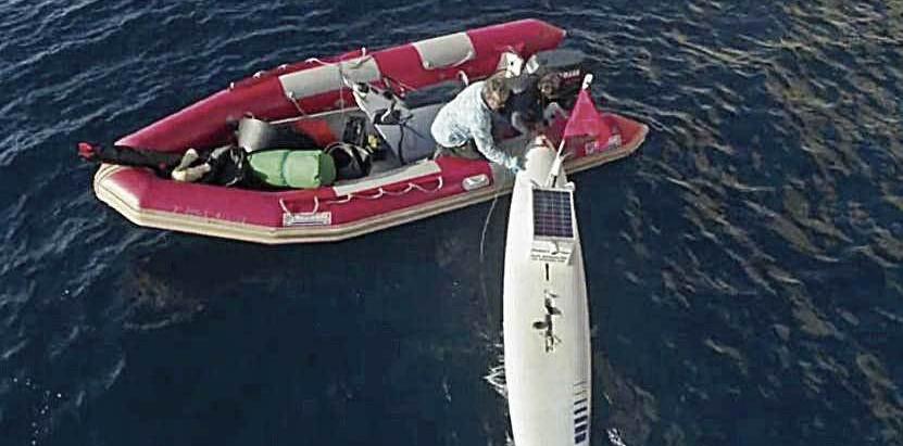 Diario de Mallorca muestra la labor de Shark Med