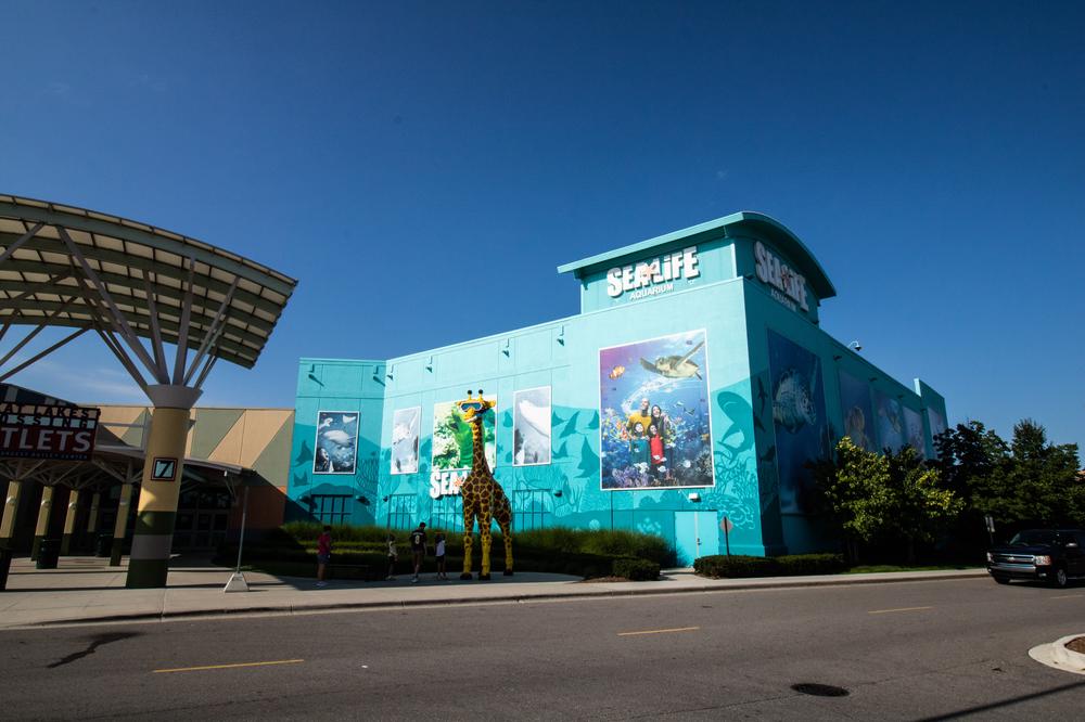 Visiting SEA LIFE Michigan Aquarium in Auburn Hills