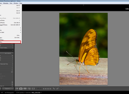 How to add a watermark in Lightroom.
