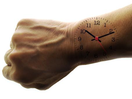 Respecter la chronobiologie pour une productivité accrue