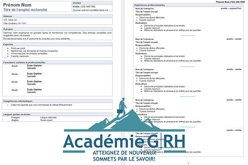 Modèle de CV - Curriculum vitae professionnel descriptif