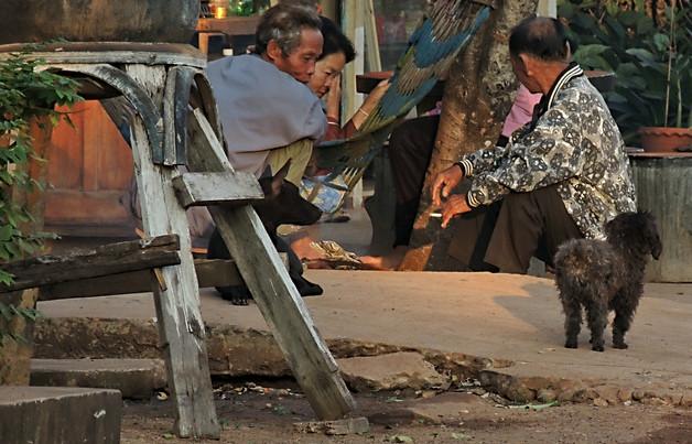 Thai village scene