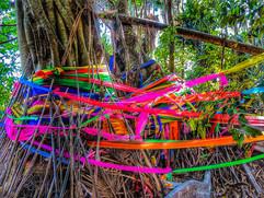 Magical Island colourful ribbons and sti